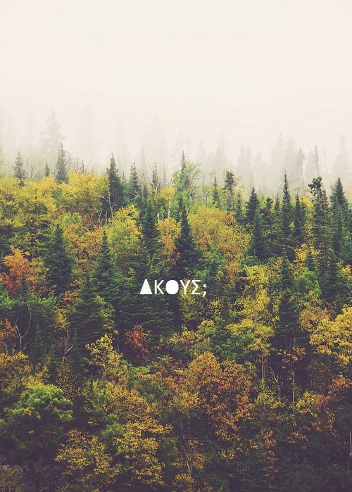 akous_n